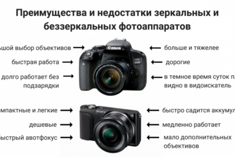 Наличие фотоаппарата еще не делает тебя фотографом кошек